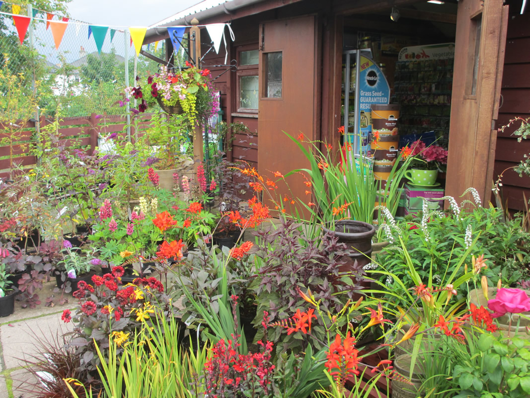 Find the perfect plant cakebreads garden centre oban for Plant nursery